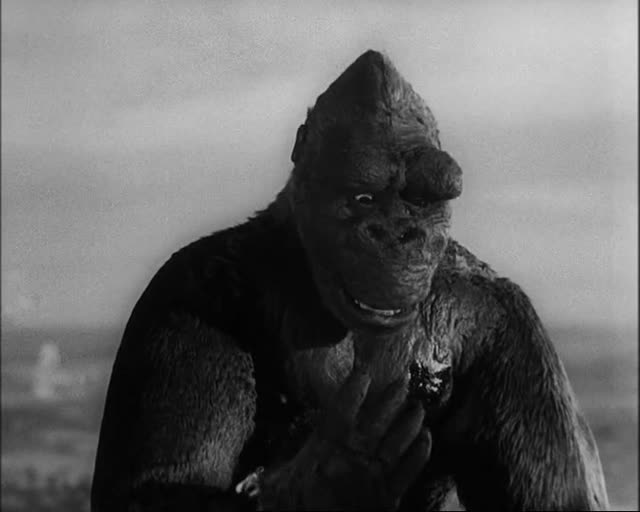 King Kong wounded