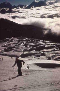 silver hit ski-ing