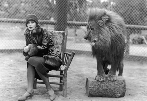 Garbo and Lion