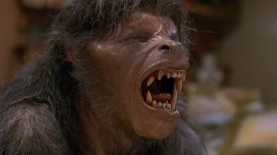 an american werewolf in london transformation 1