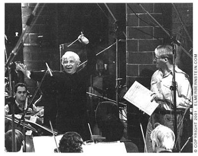 Bernstein and Palmer in 1995