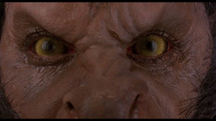 large_american_werewolf_london_blu-ray_10