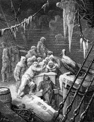 """The Albatross did follow, And every day, for food or play, Came to the mariner's hollo!"""